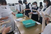 滅菌手袋のサイズを確認